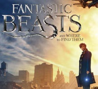 Fantastic Beasts Movie at Library