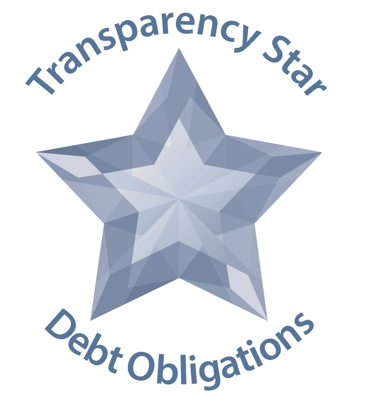 Debt Transparency Star Logo