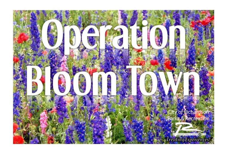Operation Bloom Town Page Image 2012