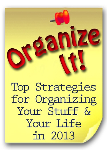 organize program allison venuto