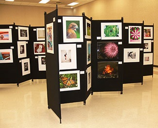 Phot of the display of pictures at the Awards Ceremony